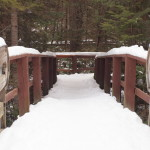 Bridge in Snow, Siderius Photo